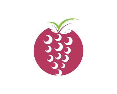Grape fruits with leaf icon vector illustrtion  template