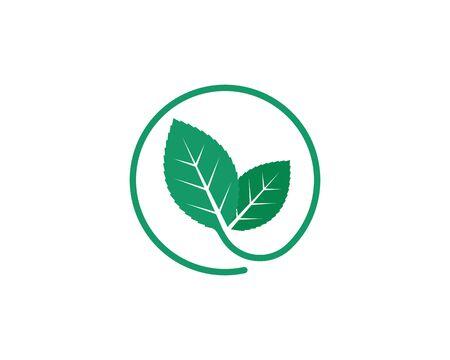 mint leaf illustration vector template design