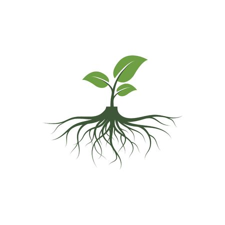 tree roots vector icon illustration design template 일러스트