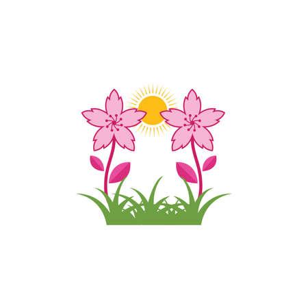 sakura flower vector illustration design template