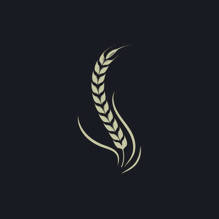 Agriculture wheat   vector icon illustration design template