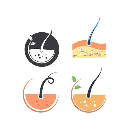 hair root icon vector illustration design template Stock Illustratie