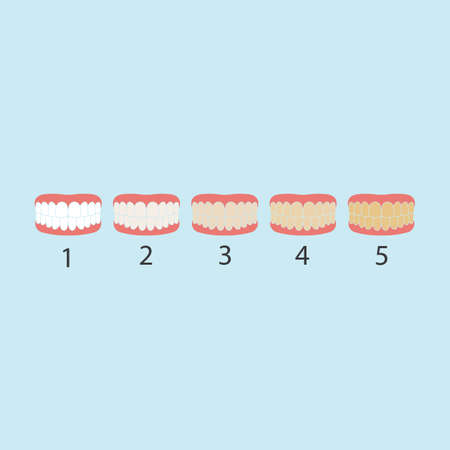 tooth color level vector illustration design