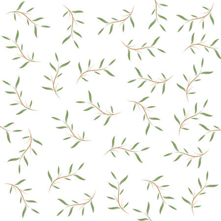 melaleuca cajuputi leaf background vector illustration design template