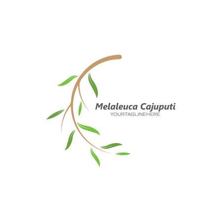 melaleuca cajuputi leaf icon vector illustration design template