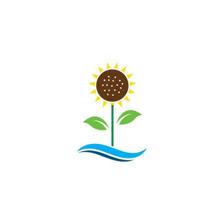 Sunflower  icon vector illustration design template