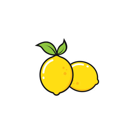 lemon  fruit  vector  illustration concept  design template