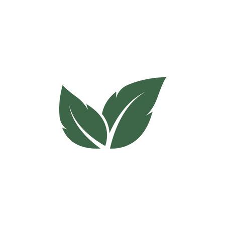 green leaf ecology nature element vector icon design 向量圖像