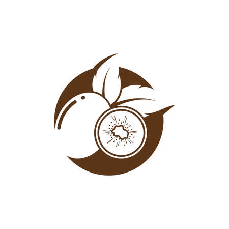 kiwi fruit icon vector illustration design template 向量圖像
