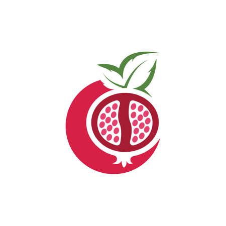 pomegranate fruits  icon vector illustration design template