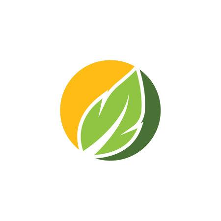 organic leaves icon vector design template web