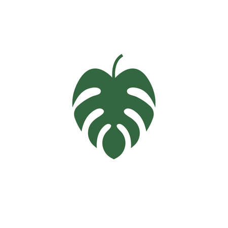 monstera leaf icon vector illustration design template web