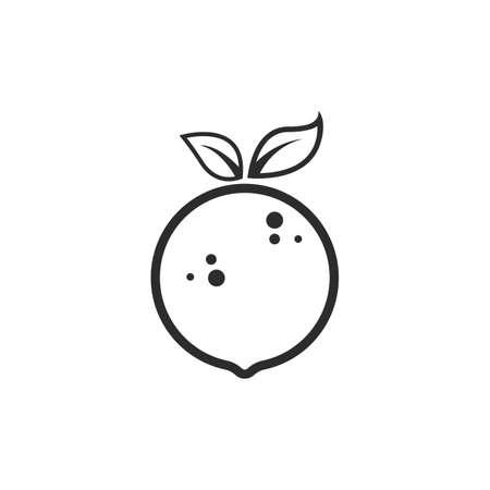 orange fruit line vector  illustration concept  design template