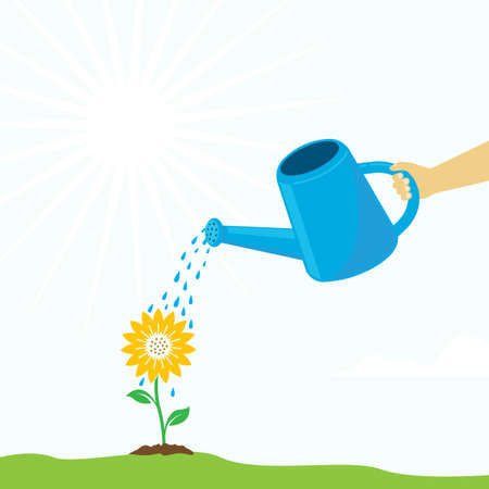 watering sunflower plant in the garden vector background illustration concept design template