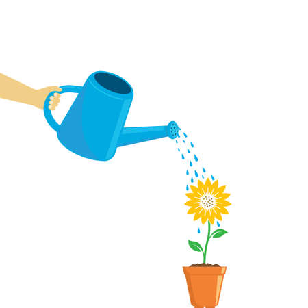 watering sunflower vector illustration concept design web template Illustration