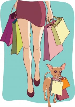 lap dog: Illustrazione in stile cartone animato di una donna e il suo piccolo cane con lo shopping