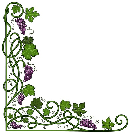 grape leaf: Colored decorative frame with a vine on a white background