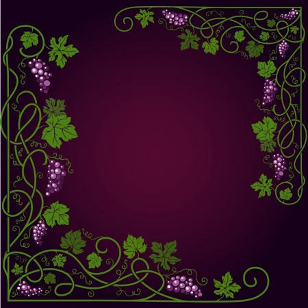 bunch of grapes: Colored decorative frame with a vine on a dark violet background