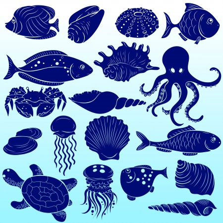 Set of silhouettes of sea fish and shells