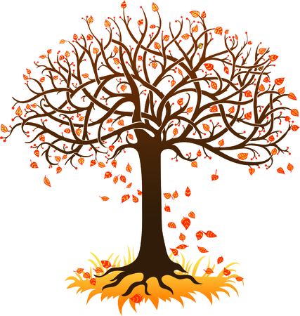 autumn tree on a white background Illustration