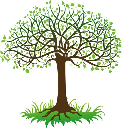 tree of life silhouette: Green tree on a white background