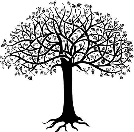 arbre feuille: Silhouette noire d'un arbre sur un fond blanc