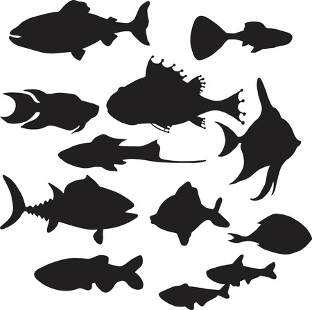 moorish idol: Set of silhouettes of fishes Illustration