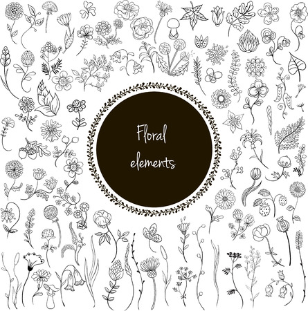 Big set of simple outline floral elements: flowers, grass, leaves