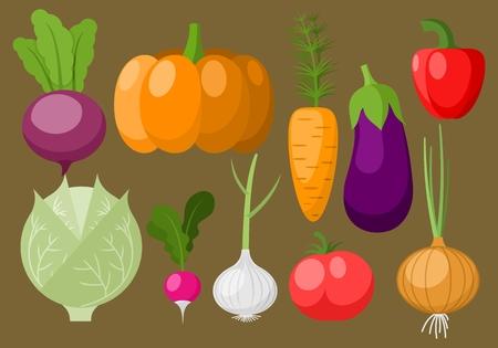 cucurbit: Different varieties of vegetables: tomato, radish, paprika, pumpkin, cabbage, aubergine, onion, garlic, carrot, eggplant