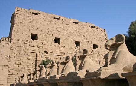 Row of Sphinxes at Karnak Temple, Luxor, Egypt photo