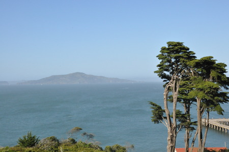 View of Alcatraz Island in San Francisco with blue sky and tree