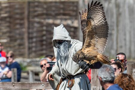 Birds and raptors show in provins, France