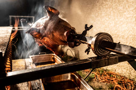 A grilled pig during a party Foto de archivo