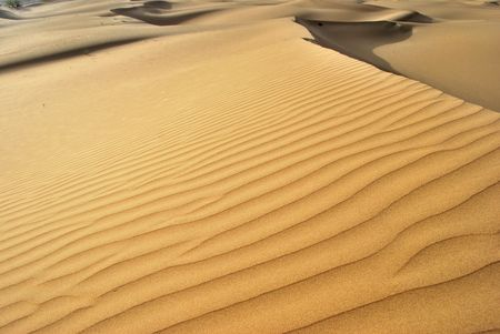 Thar desert in India  photo
