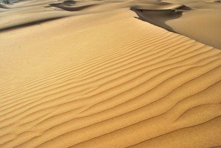 Thar desert in India  photo