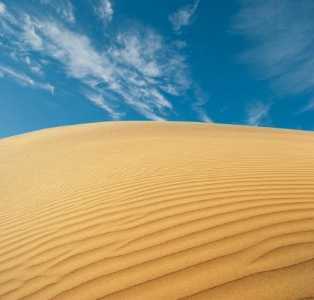 rajasthan: sand desert