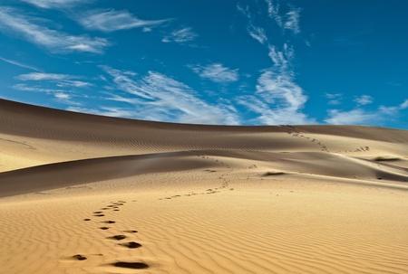horizonte: arena del desierto