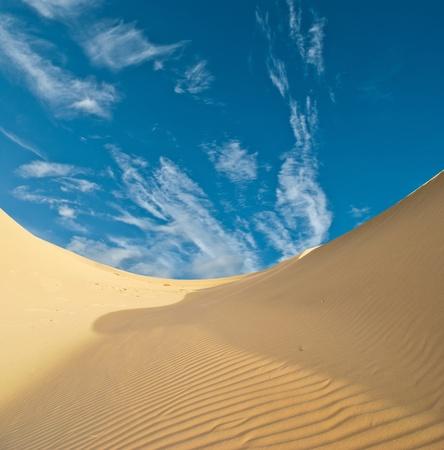 thar: sand desert