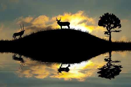 Safari in Africa. Silhouette of wild animals reflection in water.  photo