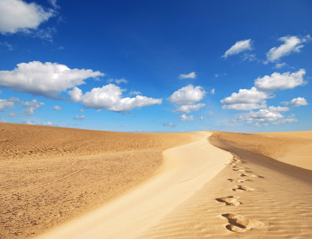desert scenes: sand desert Stock Photo