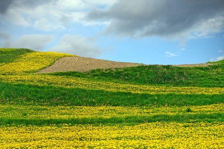 Mountain Landscape Stock Photo - 4484071