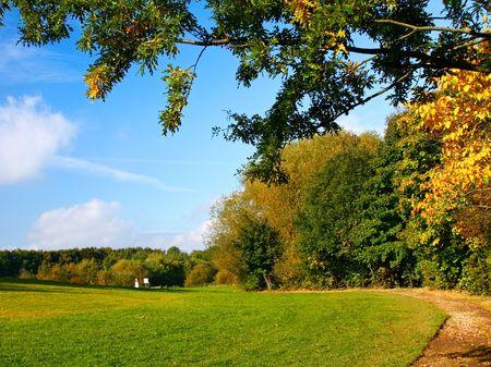 Autumn park Stock Photo - 6067971