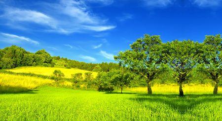 the countryside: Panorama estivo Archivio Fotografico