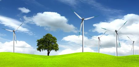 Tree on wind farm Stock Photo - 6190417