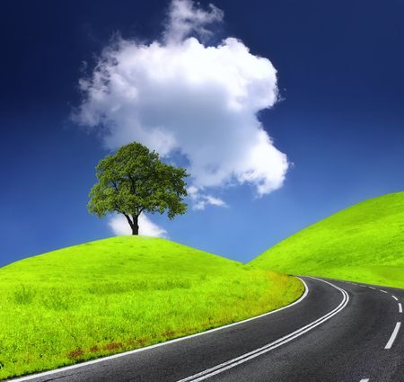 Road and green tree photo