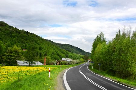 Green landscape - country road photo