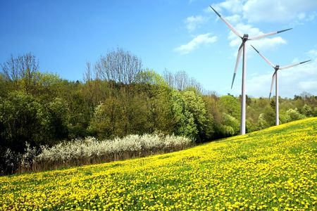 Dandelions on spring field and wind turbine Stock Photo - 6285335