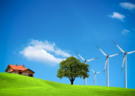 Wind ecology photo