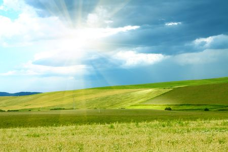 Bright sun over the green grass and blue sky Stock Photo - 6641658