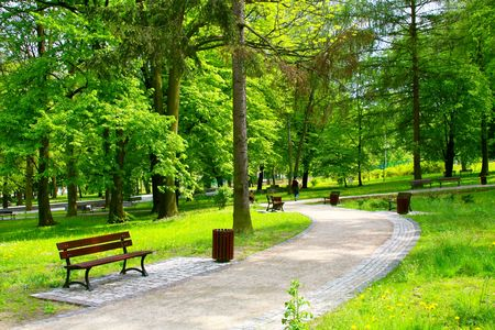 walk in the park: Beautiful park